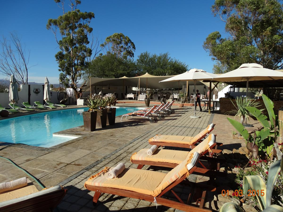 Private Chalet Swimming Pool At The Game Reserve