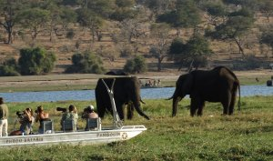 7 Night And 8 Day Cape Town, Kruger And Victoria Falls