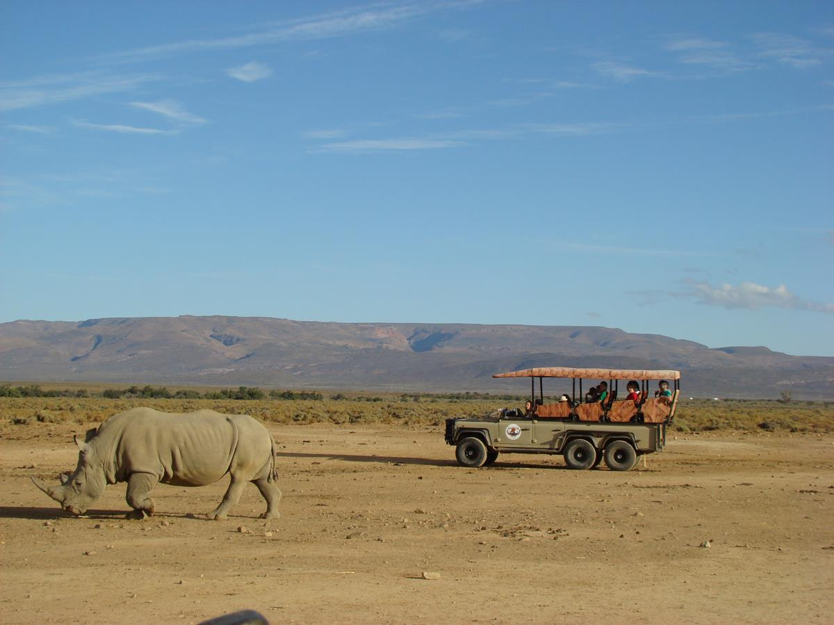First Safari On This Overnight Luxury Safari