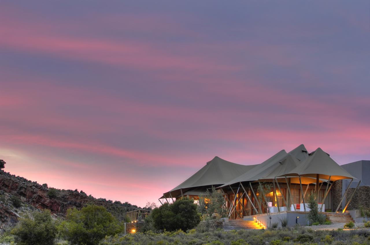 Luxury safari tented accommodation