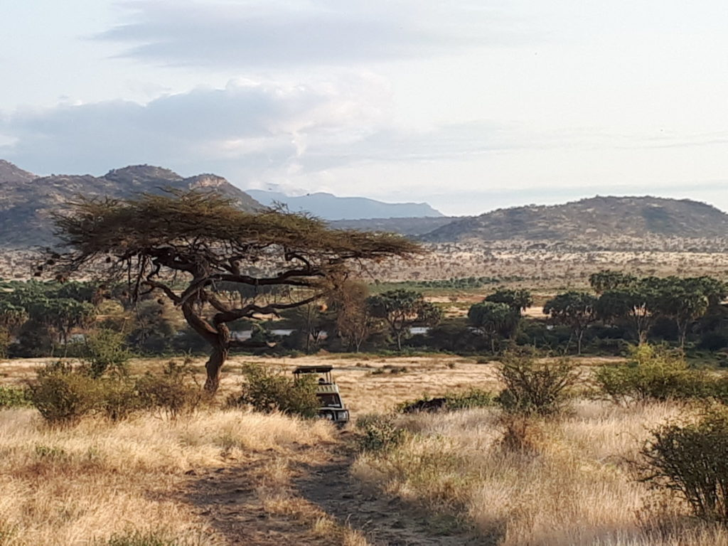 View over Samburu National Park in Kenya